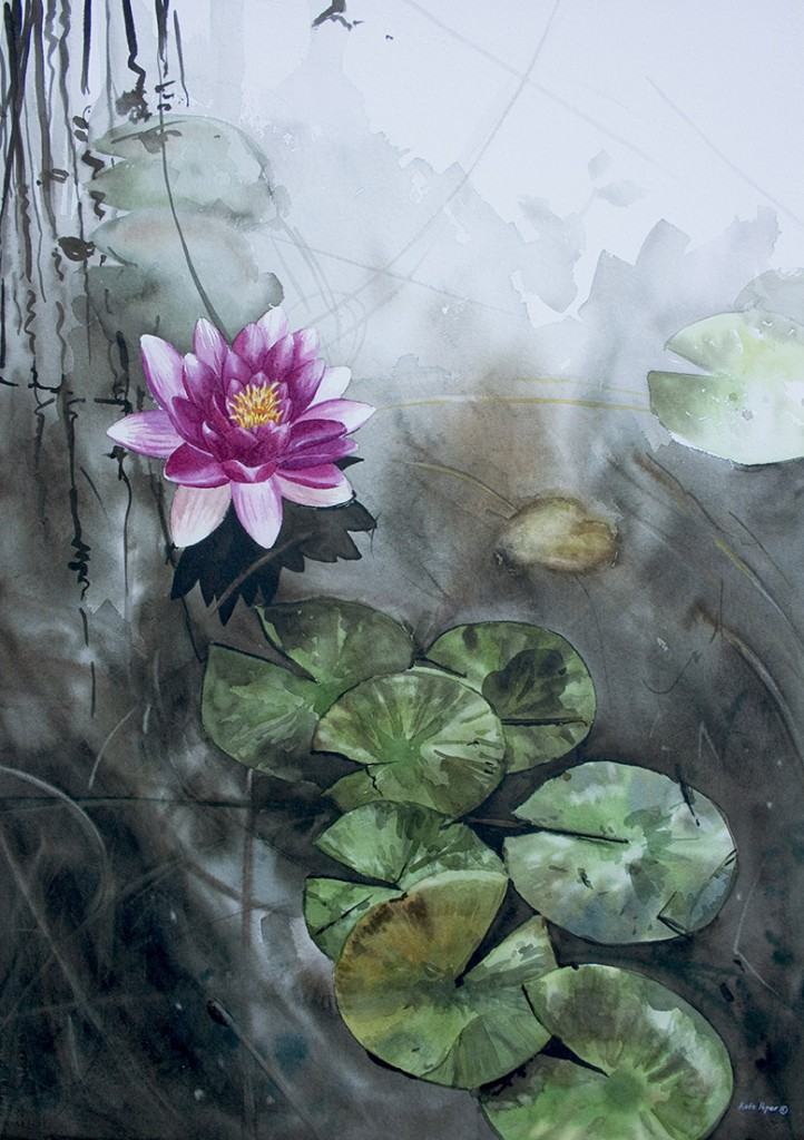 Pink Water Lily by Peper