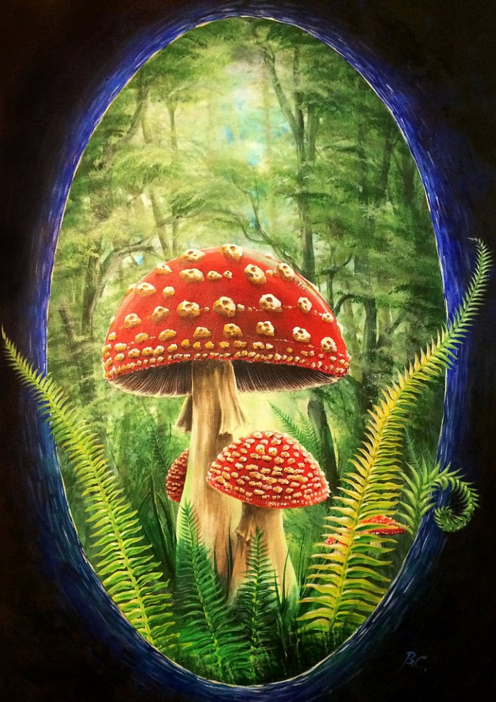 club_muscaria_painting_by_bccreativity-d7j0z25