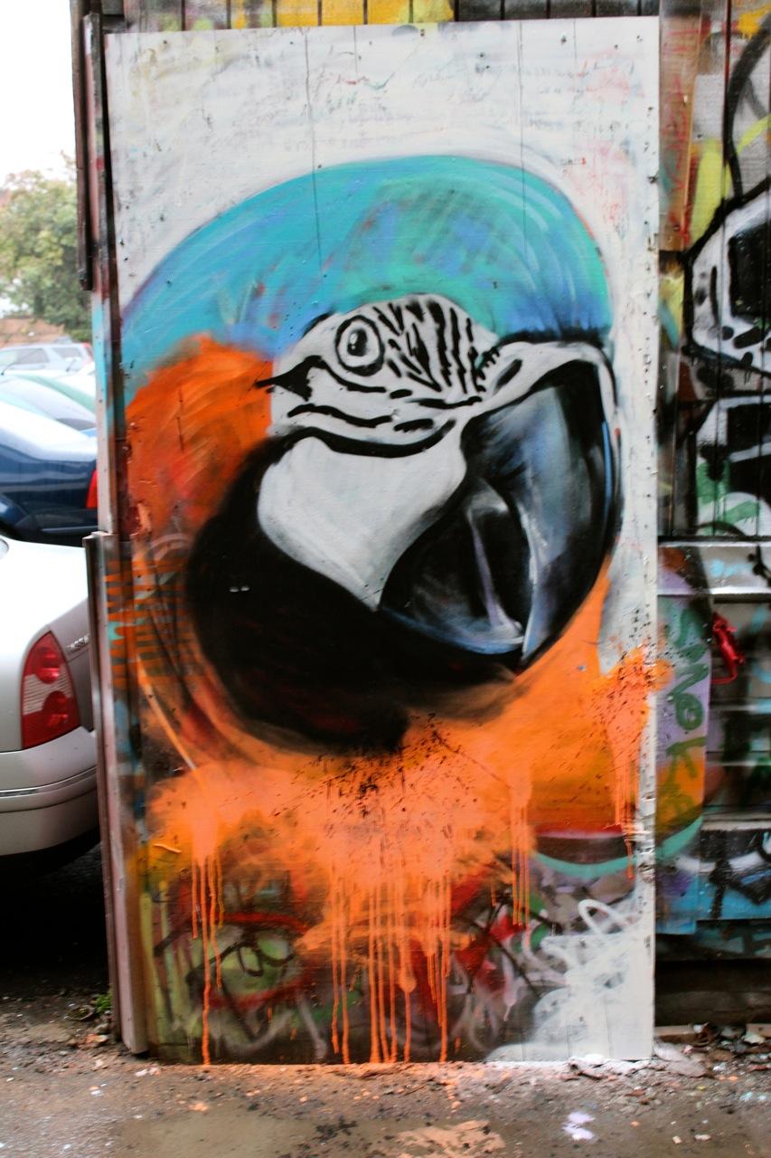 parrot-philipp Aurand