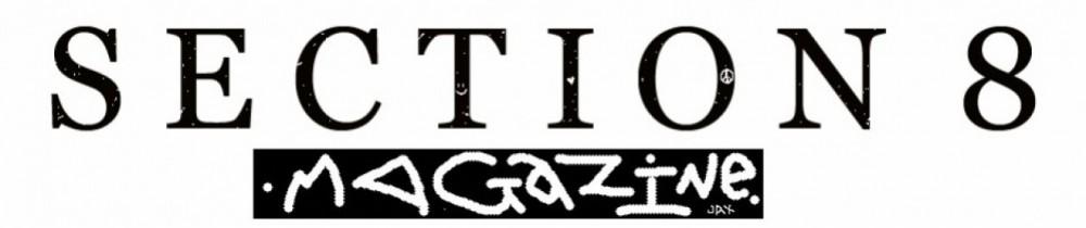 cropped-cropped-Section-8-magazine-logo.jpg
