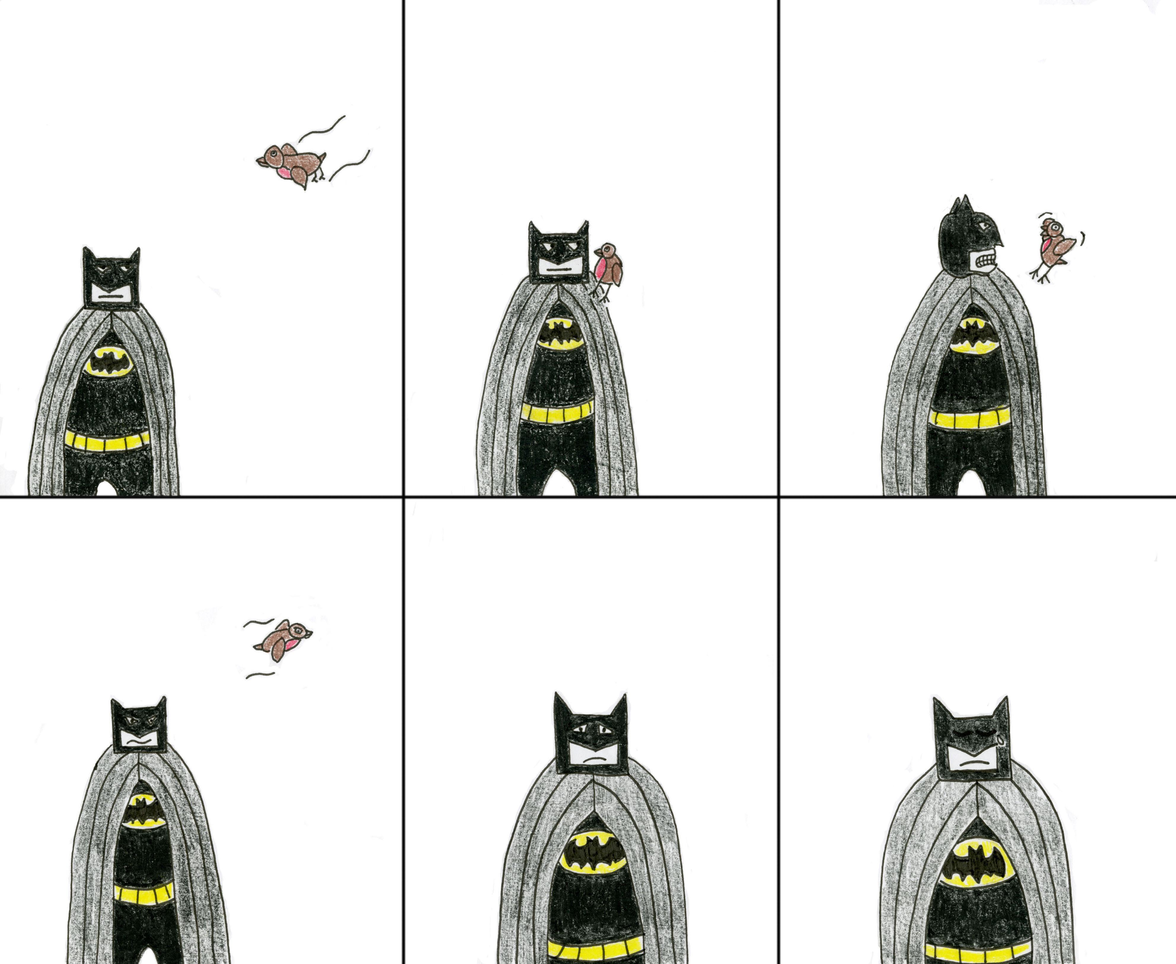 batman_reformat
